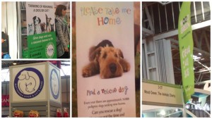 The message to rescue a dog rather than buy a puppy was being broadcast loud and strong at Crufts 2016.