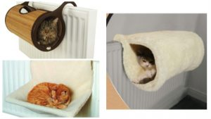 Radiator beds can be popular snoozing spots! Warm, raised and some even come covered!