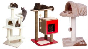 Cat trees that come with raised beds can be great for nervous cats to rest in, but make sure there are enough spots to go around!