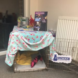 This is a perfect fireworks den! Covered on all sides, with a soft and cosy bed and a toy to keep them entertain! Note also the radio on the top to play music to mask any fireworks noises!