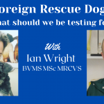 Foreign Rescue Dogs - What Should We Be Testing For?